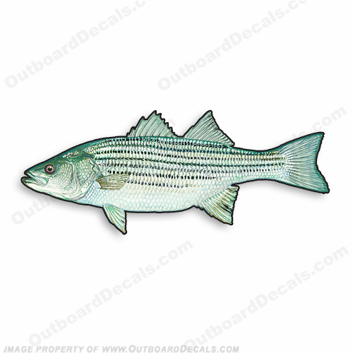 "Fish Decal ""Bass"" - Die Cut 9"" Decal"