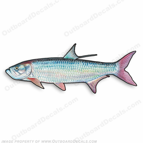 "Fish Decal ""Tarpon"" - Die Cut 9"" Decal"