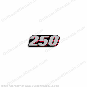 "Suzuki 2010-2013 Single ""250"" Decal - Front"